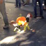 Ξεκαρδιστικό αποκριάτικο κοστούμι για ένα σκύλο