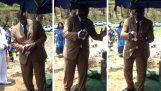 Falhar: A pomba no funeral