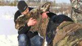 Όταν οι άνθρωποι βοηθούν τα ζώα