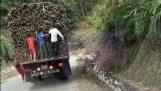 Children steal sugar cane from a trailer (Vietnam)