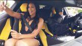 Batman Lamborghini Uber