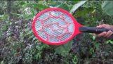 Uccidendo centinaia di zanzare in pochi minuti. Tenere gli altoparlanti !