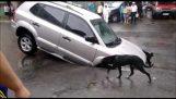 Autó süllyed Major kátyúban