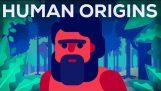 क्या इतिहास से पहले हुआ? मानव मूल