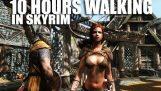 10 timmar vandrar i Skyrim som kvinna