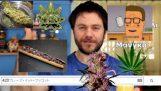 420 マリファナを吸う毎日ΜΠΛΕΪΤΣ ΙΤ