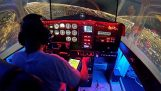 Un simulator de avion realizat manual