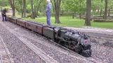 A fully functional small locomotive