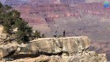 A woman almost fell off a cliff in Grand Canyon