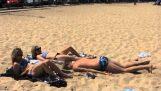 Csiga a strandon
