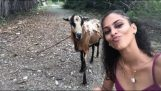 Selfie with a goat