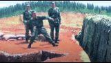 Acidentes e erros no exército