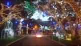 Vakreste Christmas veien