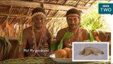 Διάφορες φυλές αντιδρούν σε βίντεο από ντοκιμαντέρ του BBC
