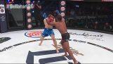 Στυγνό νοκάουτ σε αγώνα MMA