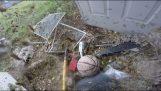 Vernietiging van een groot nest