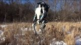 Atlas, the new humanoid robot of Boston Dynamics