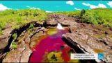 Το ποτάμι των χρωμάτων