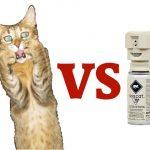 Γάτες εναντίον απωθητικού γάτας
