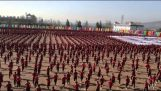 Επίδειξη της σχολής πολεμικών τεχνών Tagou στην Κίνα