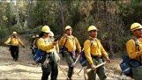 Πυροσβέστες από τη Σαμόα τραγουδούν μετά τη βάρδιά τους