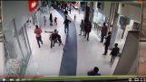 Forbipasserende stopper tyv i Johannesburg