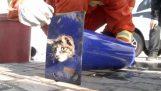 Помощь кот застрял в полюсе