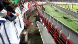 Tilbagelevering af fan i tribunen
