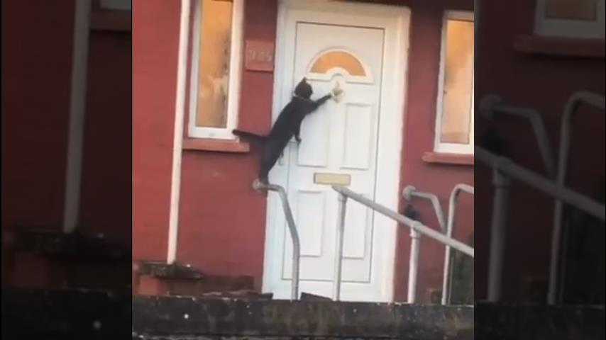 Jemand klopft an die Tür