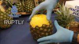 A rendőrség úgy véli, 67 kiló kokaint rejtett ananász (Spanyolország)