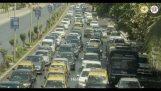 Potrestání rohy v Bombaji