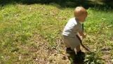 A little boy catches a snake