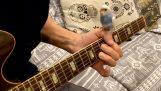 Гитара с попугаем