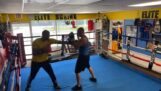 Bully challenges a coach in a boxing match
