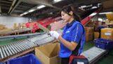 Een dag uit het leven van een distributeur in Japan