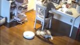 Robotene angriper