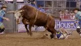 A cowboy saves for a while before being hit by the bull head
