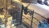 Крадец хванат в решетката на супермаркет